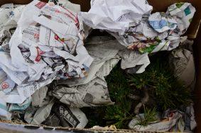 Rellenamos con papel para dar fuerza al embalaje y que no se hundan las paredes.
