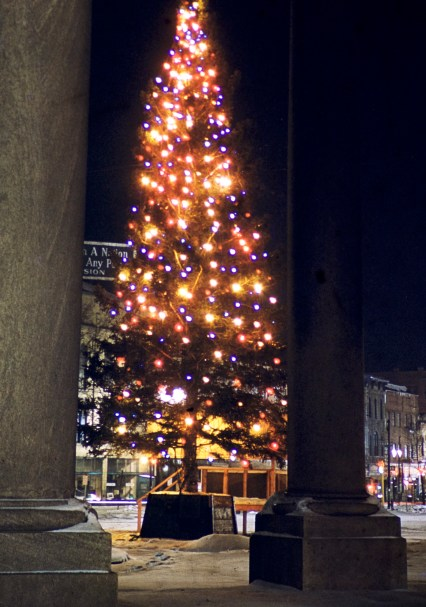 Minneapolis - The Tree