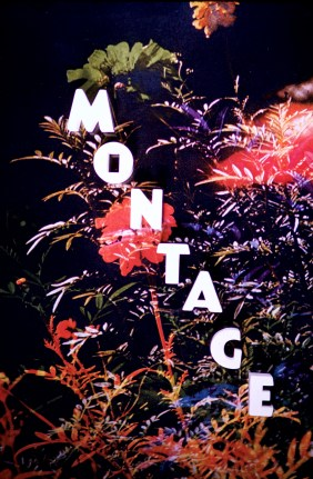 Title Cards - Montage