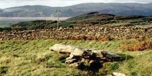 the alleged grave of Taliesin