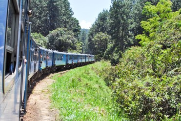 Train Kandy to Nuwara Eliya-14