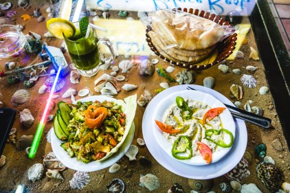 Lime and mint juice, Fatoush salad, Mutabal and pita. Aqaba, 2013.