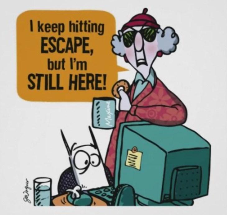Maxine cartoon seeking to escape from herself