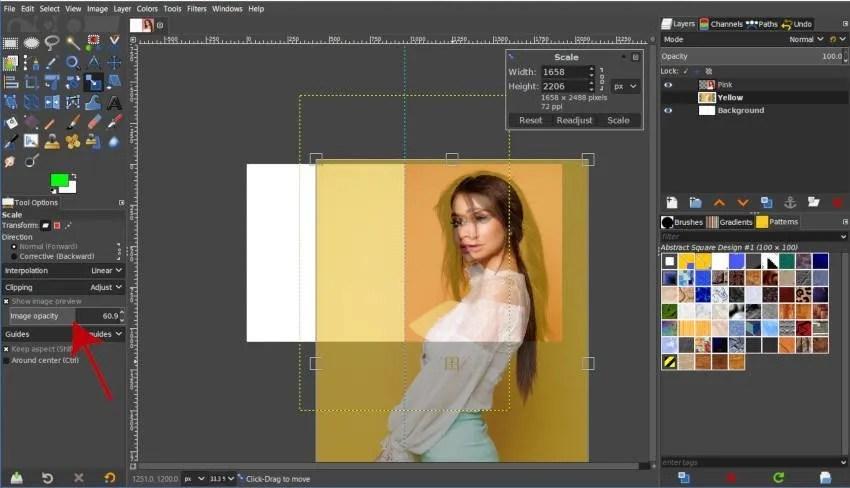 Scale Tool Image Opacity Bildvorschau GIMP