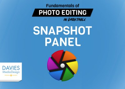 Lecture 8: Snapshot Panel