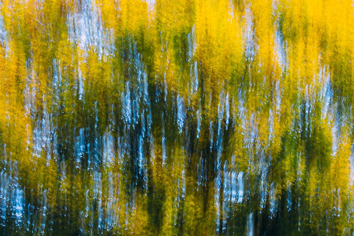 Abstraktes Bild von sich bewegenden Ästen in Schattierungen aus grün, gelb und blau