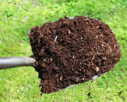 compost_image