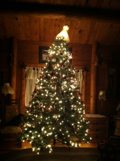 mom-and-dads-tree-2013
