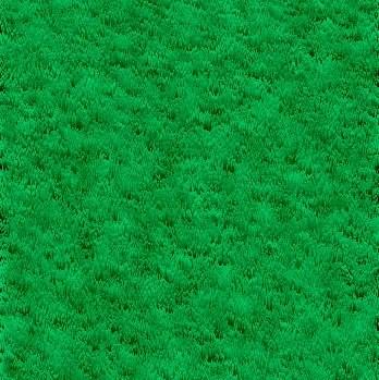 მწვანე გაზონი ფოტოშოპის გაკვეთილები