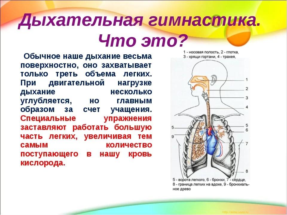 fiziniai pratimai sergant hipertenzija