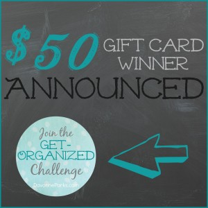 october-get-organized-winner