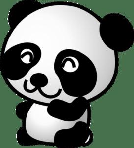 Because panda.