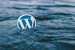WordPress logo at the sea