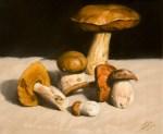 Mushrooms, oils on canvas, 25x30 cm