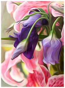 Flowers_0581-copy