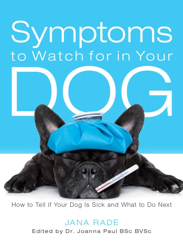 Symptoms to Watch for in Your Dog Cover