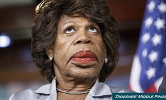 THE PROFITABLE NEPOTISM IN POLITICS WITH MAXINE WATERS
