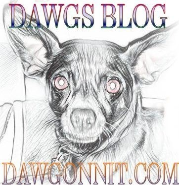 DAWGS BLOG WEBSITE NEEDS HELP
