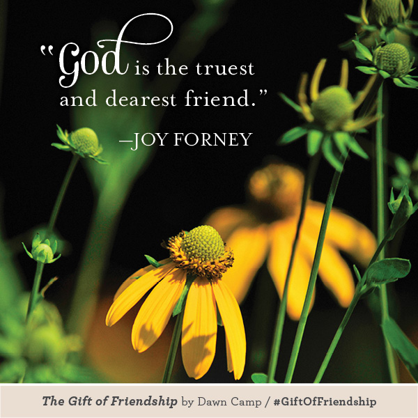 Joy Forney The Gift of Friendship #GiftofFriendship