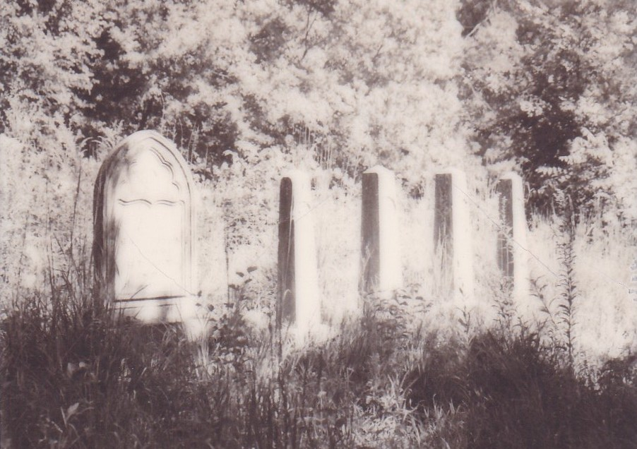 Photographs: Rochester Cemetery