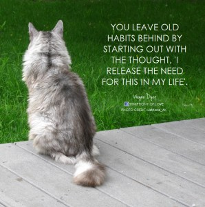 You leave old habits behind by starting out with the thought,
