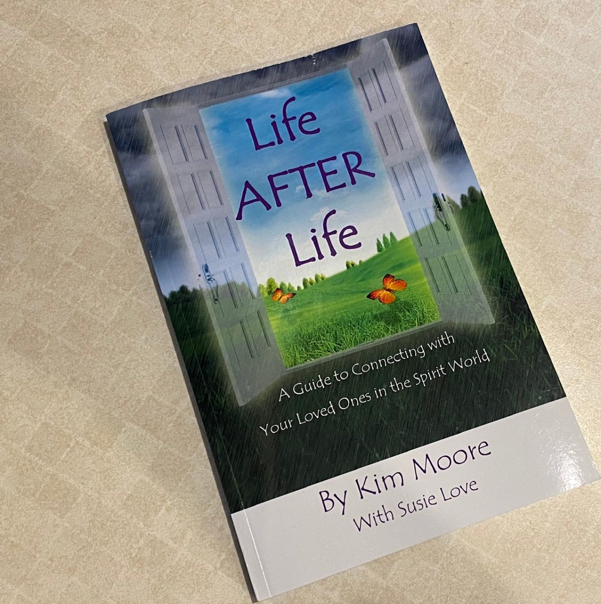 Life After Life – a Book Review