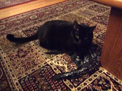 My bandana. MINE.