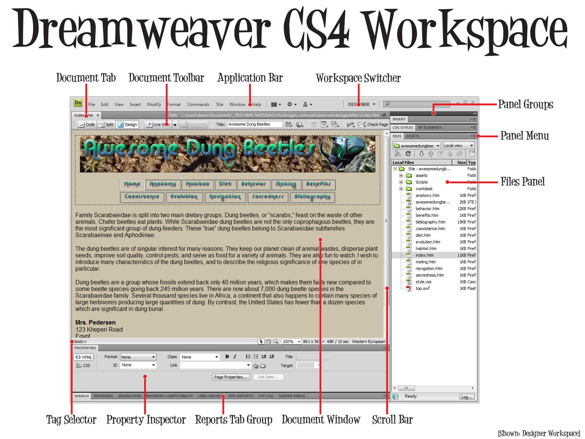 Adobe Dreamweaver Interface