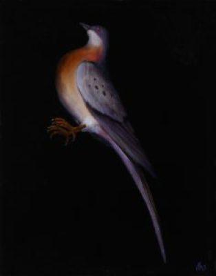 one-passenger-pigeon
