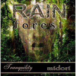 RAIN FOREST CD MIDORI
