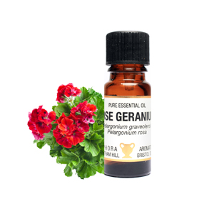 ROSE GERANIUM PURE ESSENTIAL OIL IN A 10ML AMBER GLASS DROPPER BOTTLE