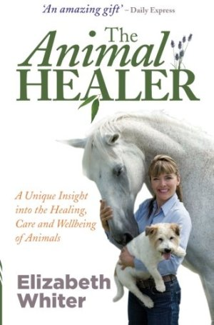 THE ANIMAL HEALER BOOK