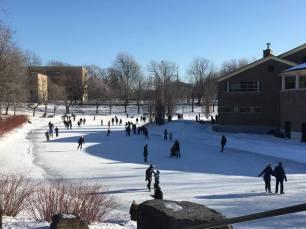 parc la fontaine ice rink 1