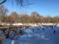 parc la fontaine ice rink 4