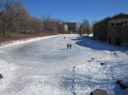 parc la fontaine ice rink 7