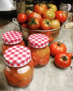 Bottled Tomatoes