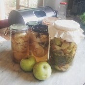 Bottled Apples & Raw Apple Cider Vinegar from the offcuts