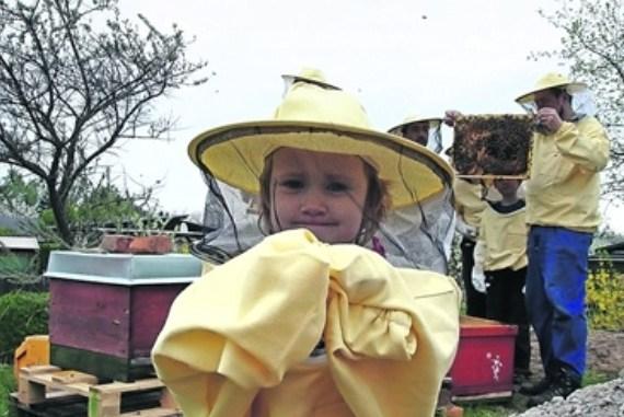 Es ist ein bisschen wie Fasching, wenn Groß und Klein zur Honigernte schreiten. Foto: Archiv Schaubienenstand