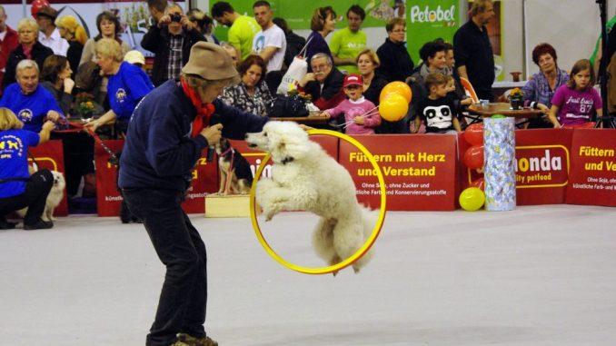 Die Heimtiermesse lockt mit Erlebnissen für Tier und Halter. Foto: PR