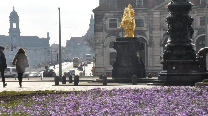 Rund um das Barockviertel auf der Neustädter Seite der Stadt wird am 28. April gepicknickt. Foto: Una Giesecke