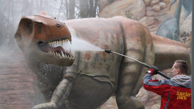 Beim Frühjahrsputz wurden die Dinosaurier gründlich abgekärchert. Foto: Franziska Sommer