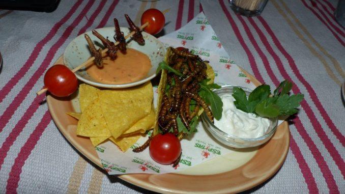 """Bei den """"Dias de Insectos"""" kann man ganz neue kulinarische Erfahrungen machen. Foto: Medienkontor"""