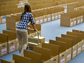 Auch bei der Abstimmung für die Groko werden einige Stimmen ausgewertet werden müssen. Foto: Arno Burgi/Archiv