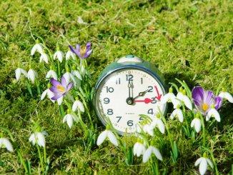 Am Sonnabend nicht vergessen: Die Zeit umstellen, damit der Wecker rechtzeitig klingelt. (Foto: Archiv)