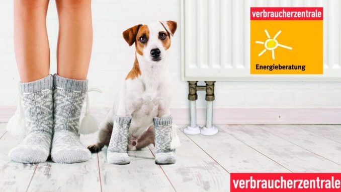 Energieberatung der Verbrauscherzentrale zum Weltverbrauchertag (Foto: Gladskikh Tatiana /Marcel Derweduwen, Shutterstock.com)