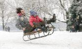 Rodelhang zwischen Japanischen Palais und kleiner Marienbrücke, Tilo (35) und seine Tochter Holly (5) genießen den Wintereinbruch mitten in der Stadt beim Rodeln. Foto: Steffen Füssel