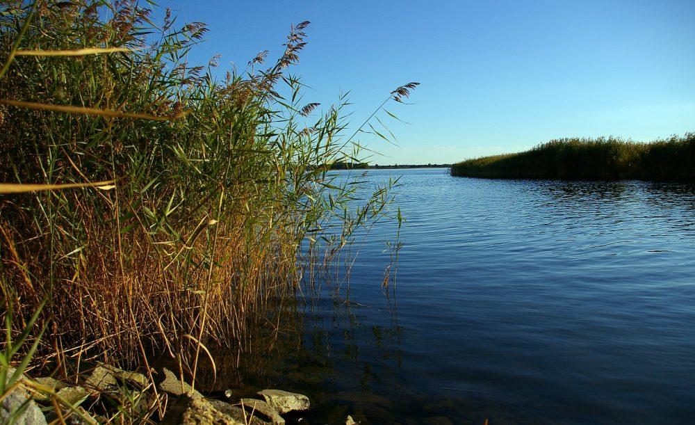 Vorsicht beim Baden in Dresdens Flüssen, Bächen und Kies-Seen