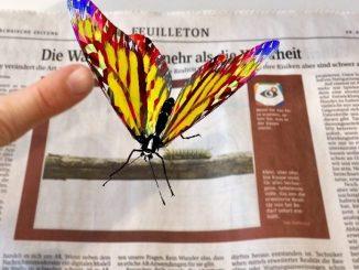 Erleben Sie 3D Modelle, Videos, Bildergalerien und vieles mehr: Heute in der Sächsischen Zeitung. Foto: Kristin Helterhoff