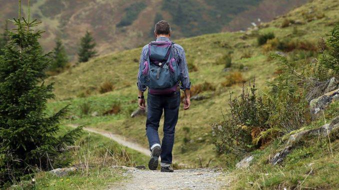 Wandern in Gemeinschaft: Beim MOPO Wandertag. Foto: Pixabay