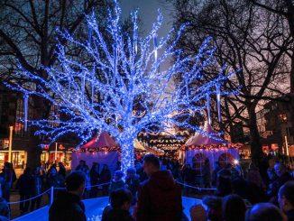 Der blaue Baum: Das Markenzeichen des Augustusmarktes. Foto: PR